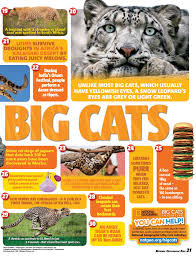 national geographic kids magazine subscription magshop