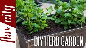 how to grow herbs diy herb garden flavcity w bobby youtube