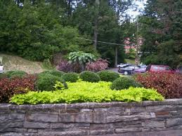 West Virginia landscapes images Terra flora landscaping landscape designer in elkins wv jpg