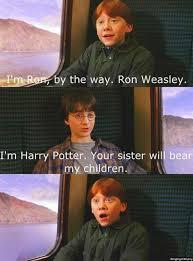 Hary Potter Memes - the best harry potter memes album on imgur
