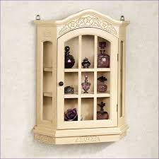 kitchen room wonderful contemporary curio cabinets sale mahogany