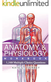 Human Physiology And Anatomy Book An Easy Guide To Learning Anatomy And Physiology 3 Bruce Forciea