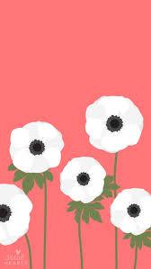 best 25 white anemone ideas on pinterest anemone wedding flower