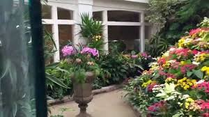 amazing floral displays out and about orchid and flower tour