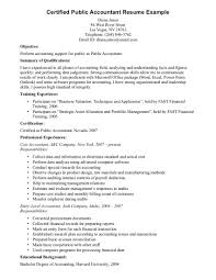 Career Objective In Cv For Accountant Professional Professional Accounting Resume