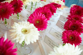 Ideas For Gerbera Flowers Cool Ideas For Gerbera Flowers Show Me Your Gerbera Daisies