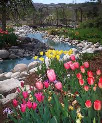 weekend giveaway tulip festival tickets utah deal