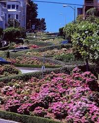 flowers san francisco let s get lost at lombard san francisco let s get lost