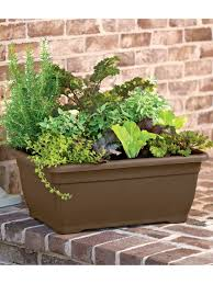 Buy Planters by Self Watering Planters Flower Pots U0026 Containers Gardener U0027s Supply