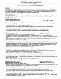 Sample Resume Of Ceo Banking Resume Format Award Winning Ceo Sample Resume Ceo Resume