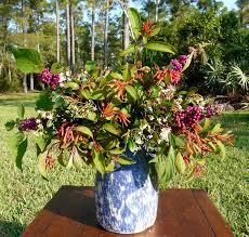 florida native plant society florida native plant society blog native plant flower arrangements