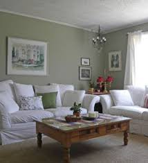 sage green home design ideas pictures remodel and decor sage green walls ideas pictures remodel and decor sage sofa