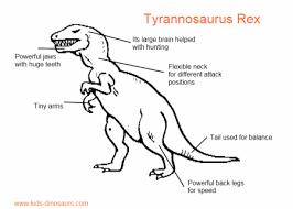 dinosaur rex facts tyrannosaurus rex dinosaurs