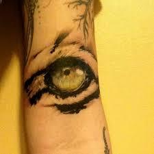 eye of the tiger designs tiger eye ideas