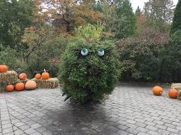 let u0027s go bronx botanical garden in new york