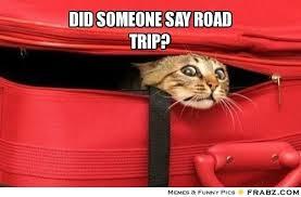 Trip Meme - dec 4 2014 road trip zoe ambler