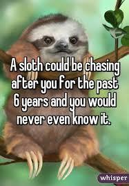 Sloth Whisper Meme - this made me giggle sloths pinterest sloth whisper and animal