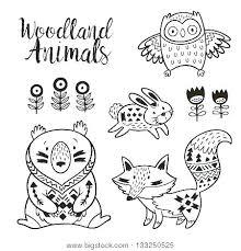 preschool jungle coloring pages rainforest animals coloring pages printable animal coloring pages