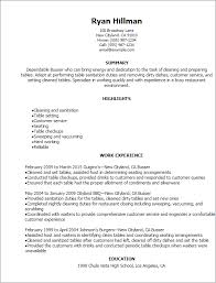 Resume Samples For Cleaning Job by Professional Busser Resume Templates To Showcase Your Talent