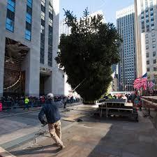 new york bronx news videos photos and local columnists ny