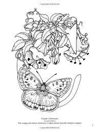butterfly alphabet coloring alphabet pinterest butterfly