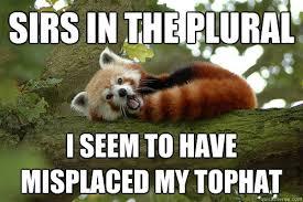 Funny Panda Memes - raging red panda memes quickmeme