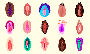 hair vagaina photos these are the very best vagina emoji for sexting the verge