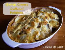 scalloped potatoes for the oven or the cooker