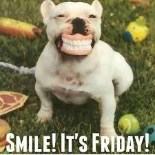 Happy Friday Meme Funny - happy friday memes