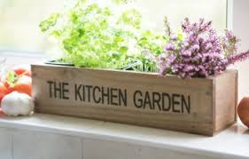 kitchen herb garden windowsill planter with seeds and compost 12 99