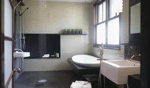 shower walk in bath shower eunoia prices on walk in tubs