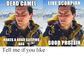 Bear Grylls Memes - bear grylls