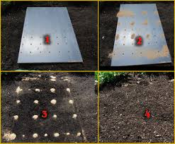 Garden Seed Planter by Planting Seeds With A Board Butterfly Gardening