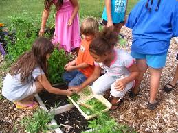 spring garden family practice coprevent 2014 08 03
