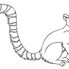 meerkat coloring pages king julien with clover penguins of