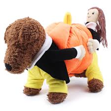 pumpkin costume halloween compare prices on funny pet halloween costumes online shopping