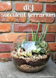 best 25 plants in glass bowl ideas on pinterest succulent