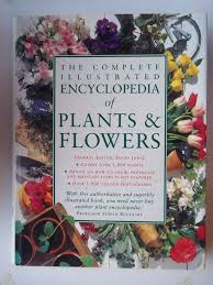flower encyclopedia the complete illustrated encyclopedia of plants flowers