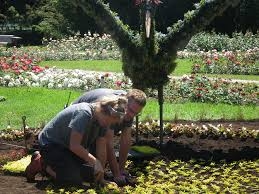 mosaicultures is a hit at montreal botanical garden