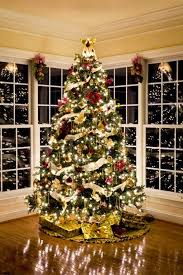 Decoration Of Christmas Tree History by 91 Best Christmas Images On Pinterest At Home Home Depot And