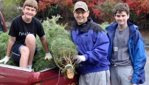 How To Trim A Real Christmas Tree - how to trim a christmas tree the tessa edition u2013 gardening nirvana