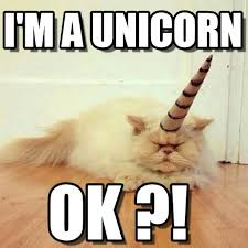 Unicorn Memes - i m a unicorn cat unicorn meme on memegen unicorns