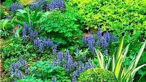 Fall Garden Plants Texas - gardening in south texas u2013 exhort me