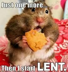 Fat Tuesday Meme - fat tuesday musings precious fool