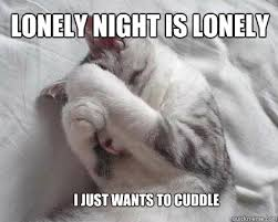 Sad Kitty Meme - list of synonyms and antonyms of the word lonely kitten meme