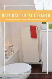 the 25 best natural toilet cleaner ideas on pinterest homemade