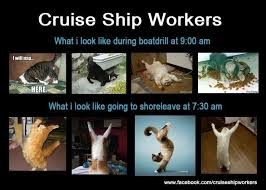 Cruise Ship Memes - working on a cruise ship memes travelling the world with emma