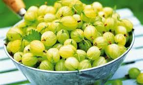 alan titchmarsh u0027s tips on growing fruit in your garden garden