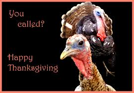 funny images of turkeys in thanksgiving vintage funny thanksgiving card with mother and children