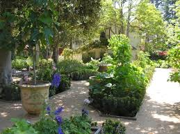 269 best growing your own images on pinterest gardening outdoor
